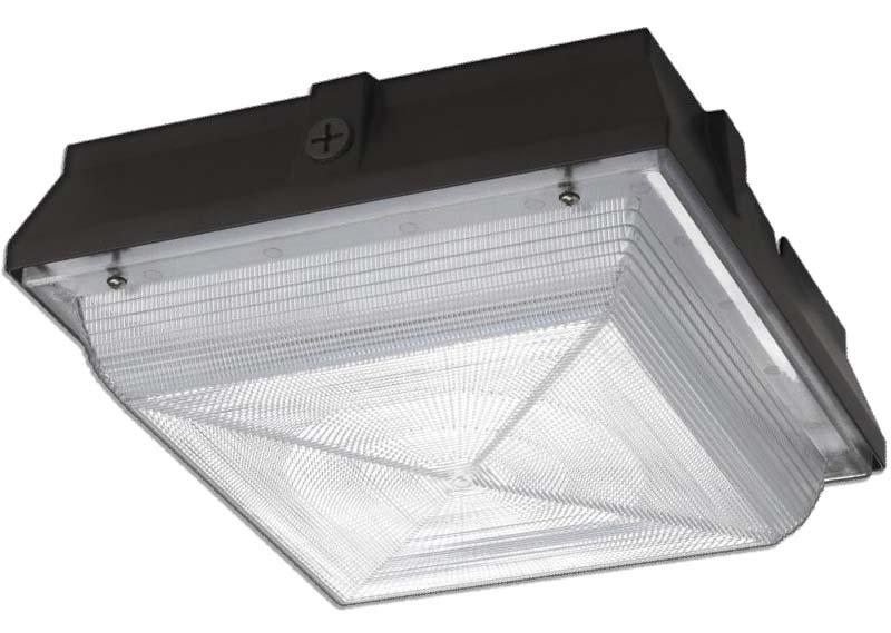 CPE - LED Canopy Light Image